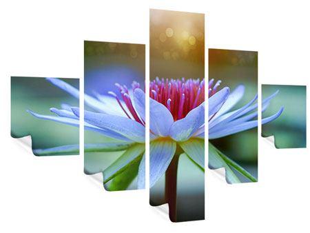 Poster 5-teilig Pretty Lotus