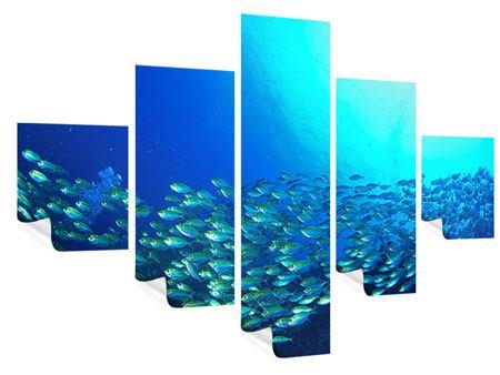 Poster 5-teilig Fischschwarm