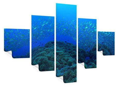 Poster 5-teilig Fischschwärme