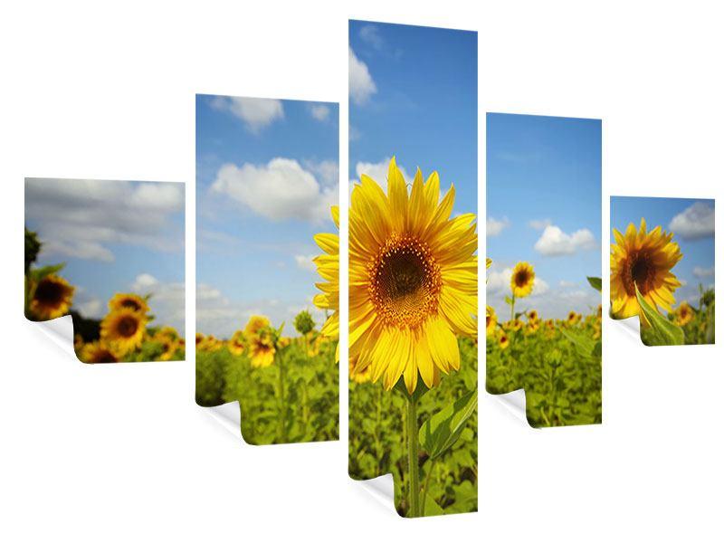 Poster 5-teilig Sommer-Sonnenblumen