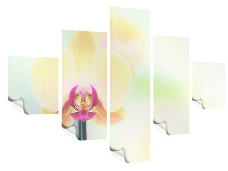 Poster 5-teilig Lovely Orchidee