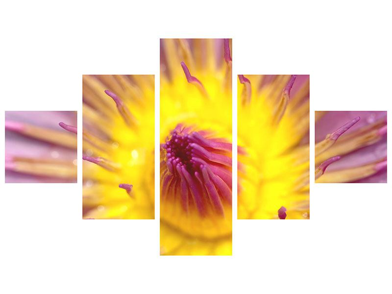 Poster 5-teilig XXL-Lotus