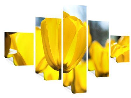Poster 5-teilig Gelbe Tulpen in XXL