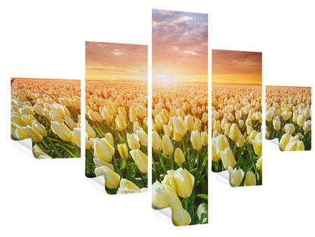 Poster 5-teilig Sonnenaufgang bei den Tulpen