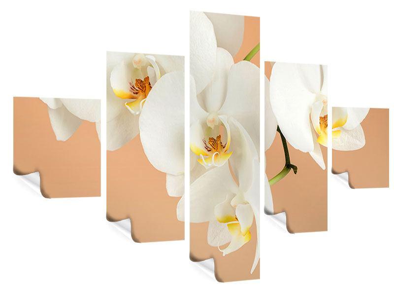 Poster 5-teilig Weisse Orchideenblüten