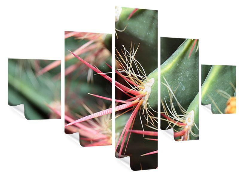 Poster 5-teilig Die Kaktusblüte