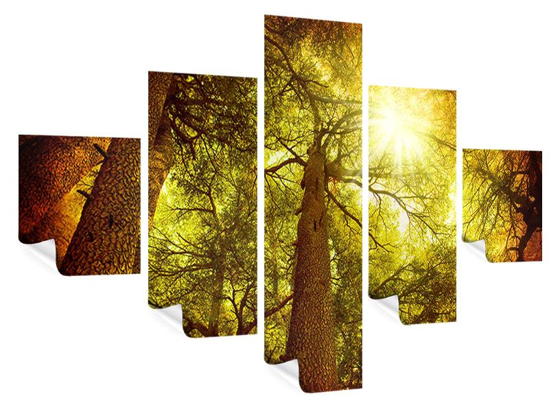 Poster 5-teilig Cedar Baum