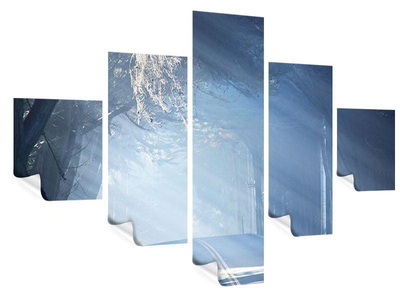 Poster 5-teilig Lichtdurchflutete Baumallee