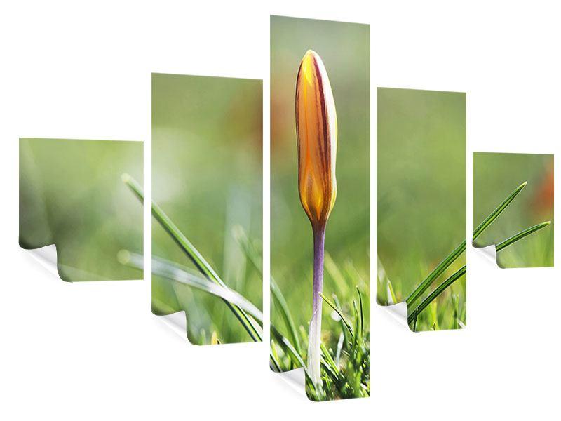Poster 5-teilig Die Blütenknospe