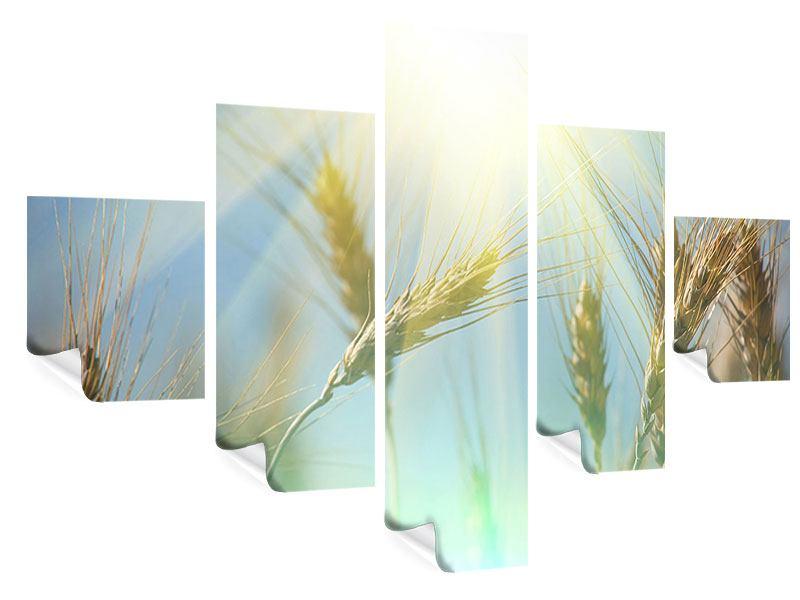 Poster 5-teilig König des Getreides