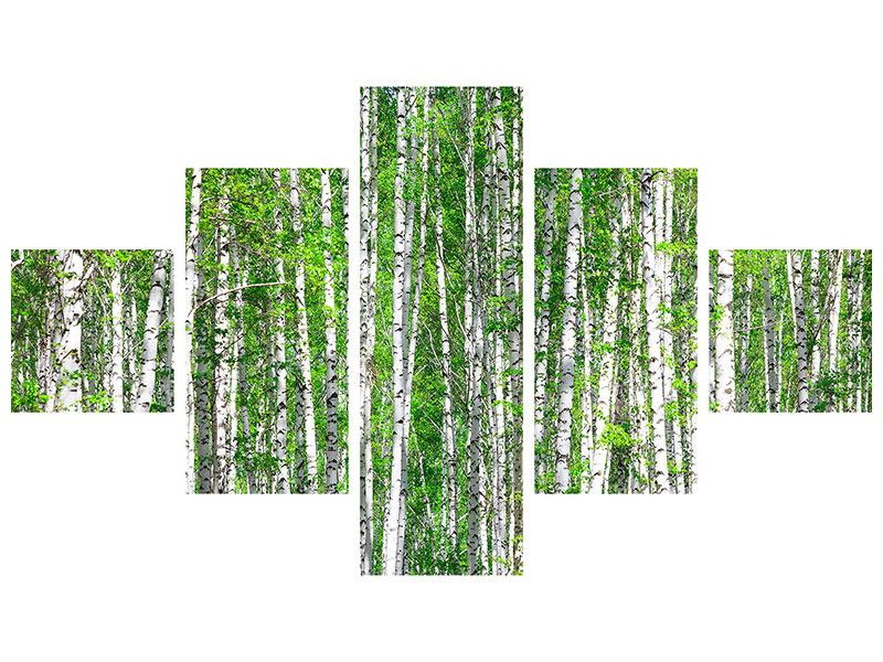 Poster 5-teilig Der Birkenwald
