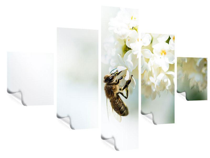 Poster 5-teilig Die Hummel und die Blüte