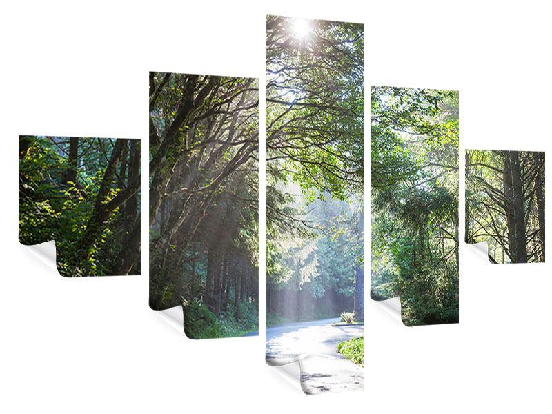 Poster 5-teilig Sonniger Waldweg