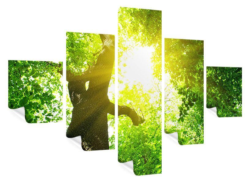 Poster 5-teilig Baum