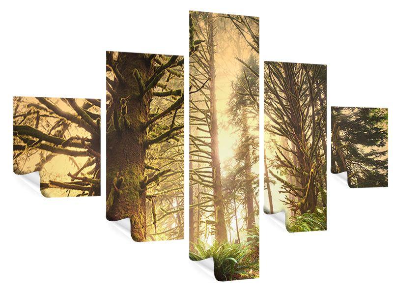 Poster 5-teilig Sonnenuntergang im Dschungel
