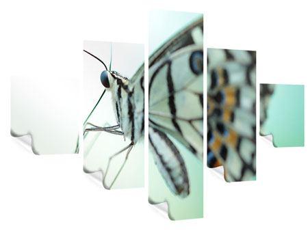 Poster 5-teilig Schmetterling XXL