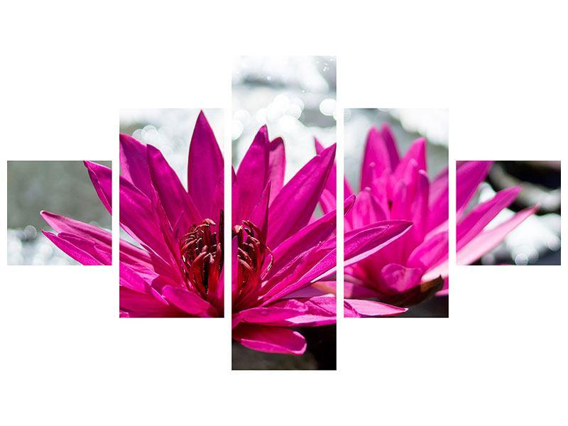 Poster 5-teilig Seerosenduo in Pink