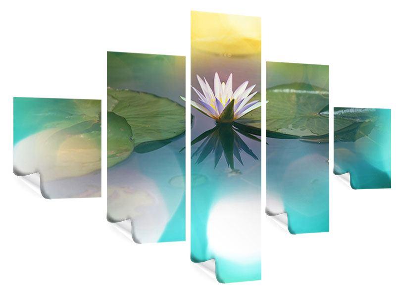 Poster 5-teilig Lotus-Spiegelung