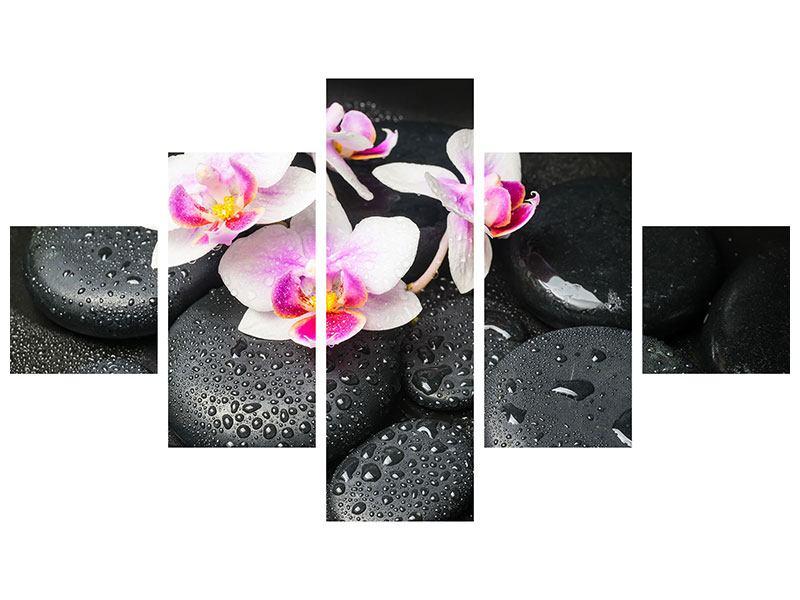Poster 5-teilig Feng-Shui-Orchidee Zen