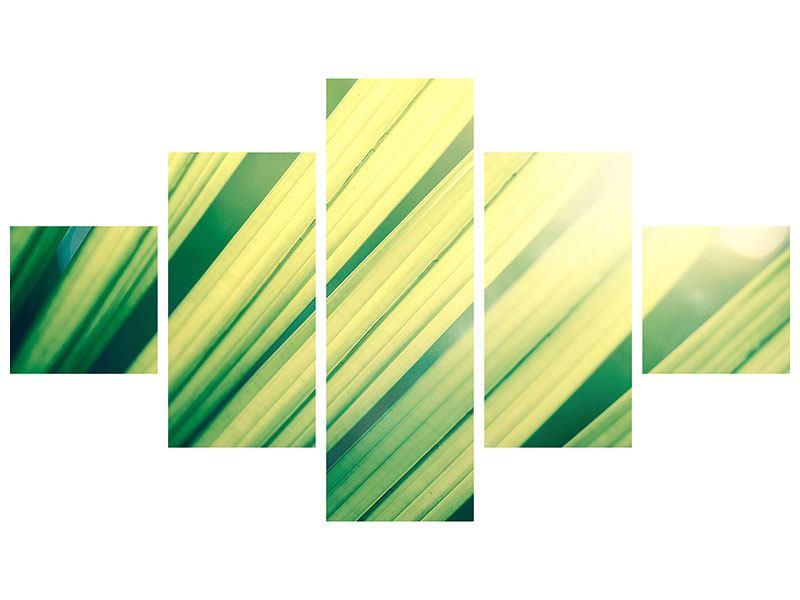 Poster 5-teilig Beleuchtetes Palmblatt