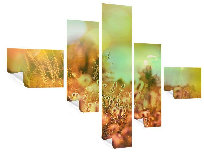 Poster 5-teilig modern Blumenwiese in der Abenddämmerung