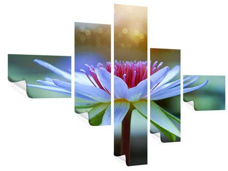 Poster 5-teilig modern Pretty Lotus