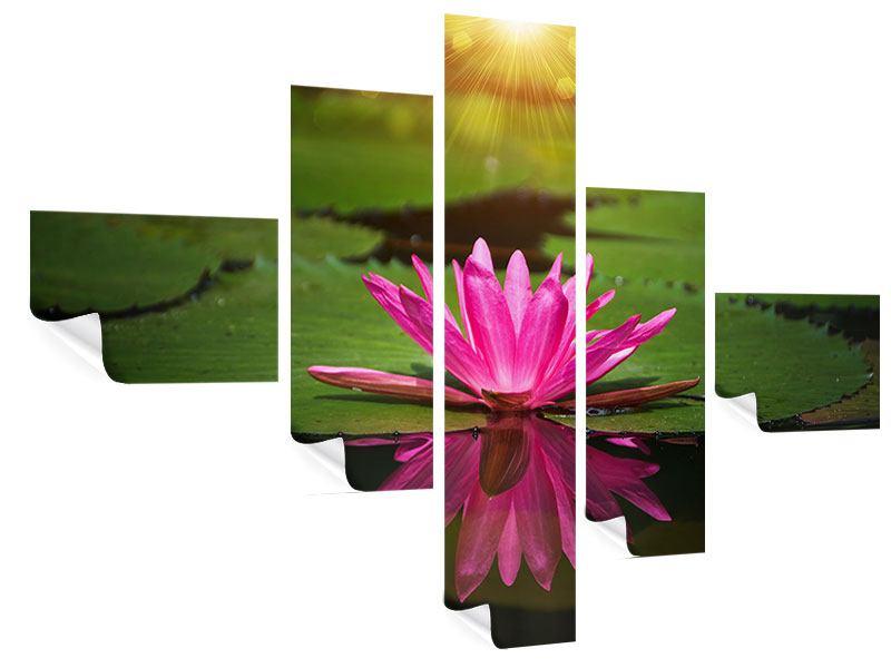 Poster 5-teilig modern Lilienspiegelung