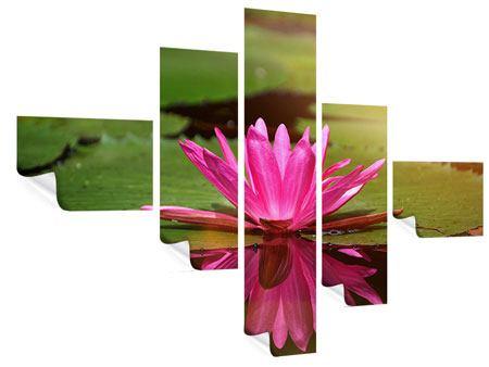 Poster 5-teilig modern Lotus im Wasser