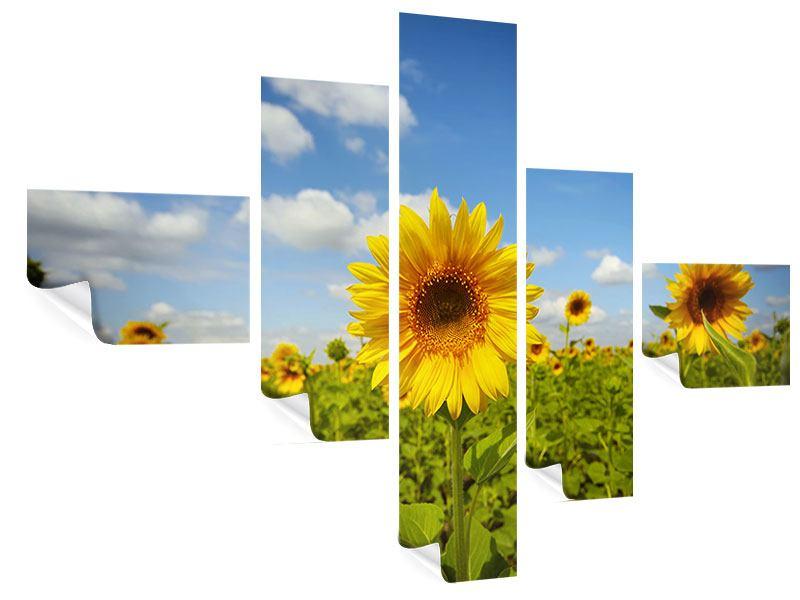 Poster 5-teilig modern Sommer-Sonnenblumen