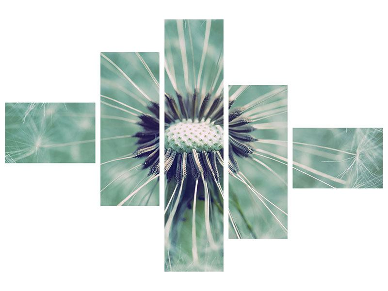 Poster 5-teilig modern Close Up Pusteblume