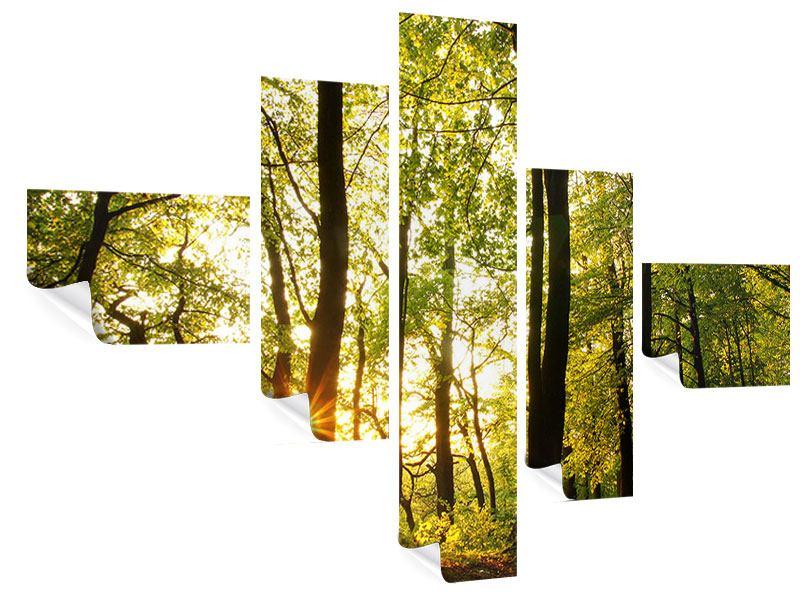 Poster 5-teilig modern Sonnenuntergang zwischen den Bäumen
