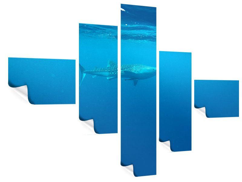 Poster 5-teilig modern Der Walhai