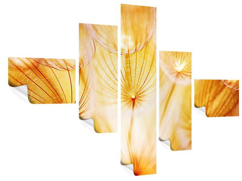 Poster 5-teilig modern Close Up Pusteblume im Licht