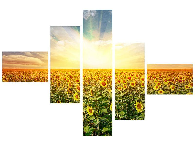 Poster 5-teilig modern Ein Feld voller Sonnenblumen