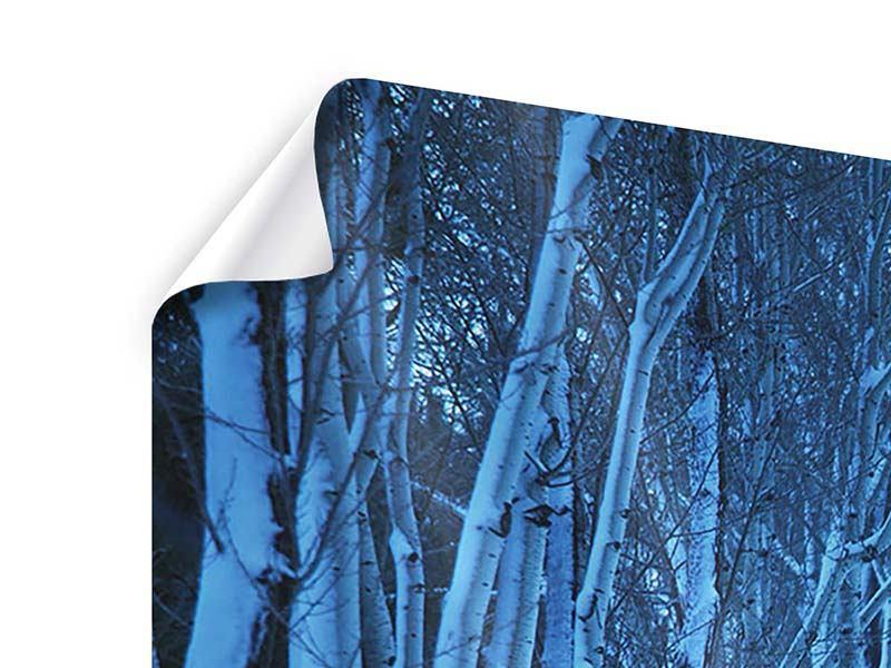 Poster 5-teilig modern Winterbäume