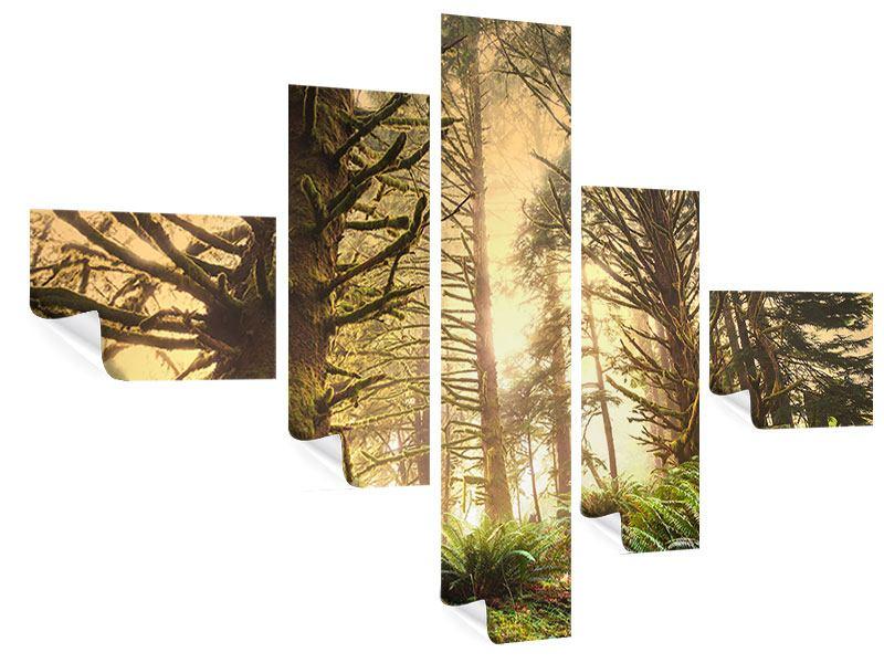 Poster 5-teilig modern Sonnenuntergang im Dschungel