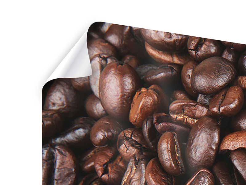 Poster 5-teilig modern Kaffeebohnen in XXL