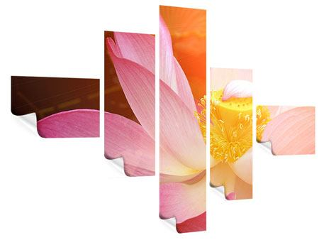 Poster 5-teilig modern Close Up Lotus