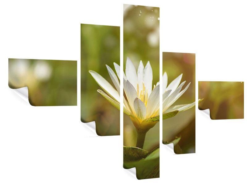 Poster 5-teilig modern Lilien-Lichtspiel