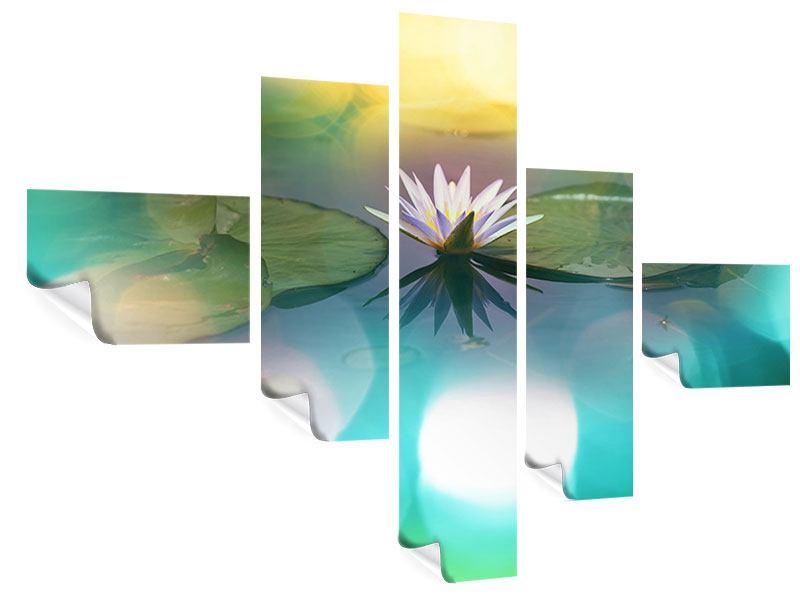 Poster 5-teilig modern Lotus-Spiegelung
