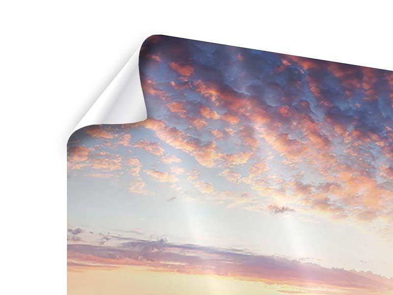 Poster 5-teilig modern Ein Blumenfeld bei Sonnenaufgang