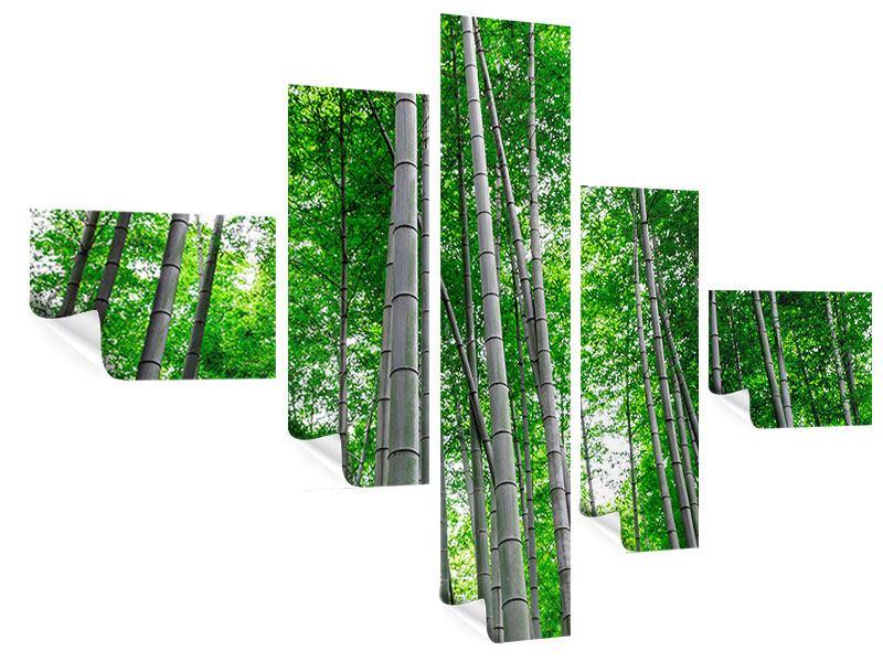 Poster 5-teilig modern Bambuswald