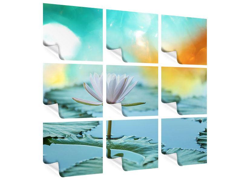 Poster 9-teilig Verträumte Lotus