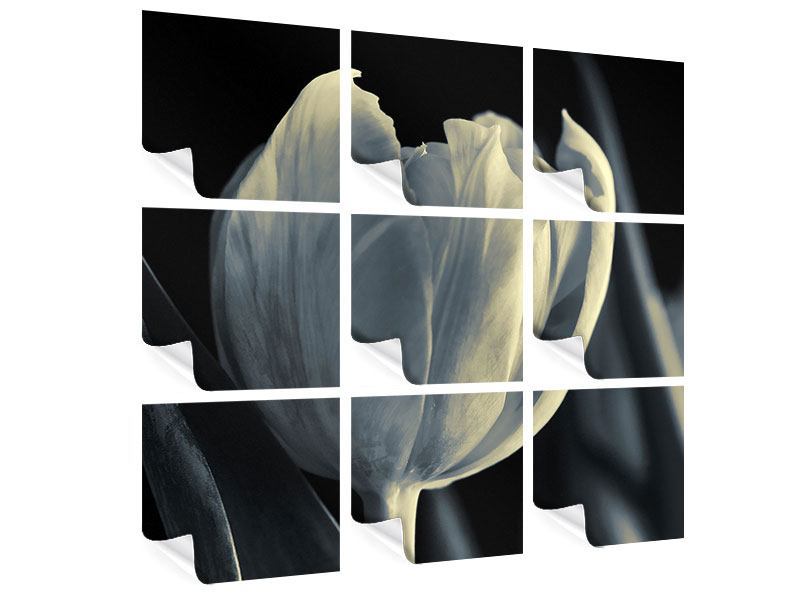 Poster 9-teilig Schwarzweissfotografie XXL Tulpe