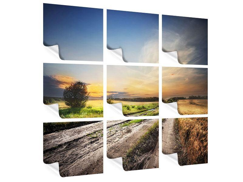 Poster 9-teilig Sonnenaufgang am Feld