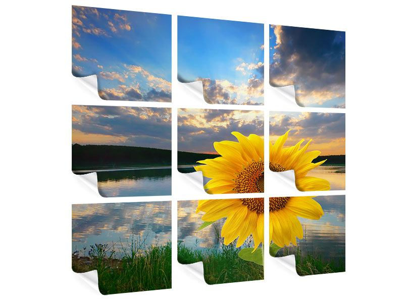 Poster 9-teilig Sonnenblume am See