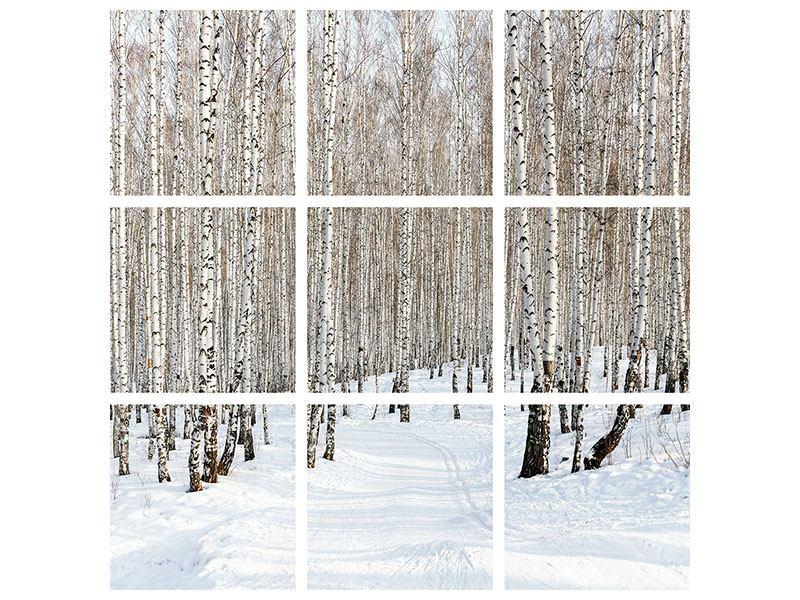 Poster 9-teilig Birkenwald-Spuren im Schnee