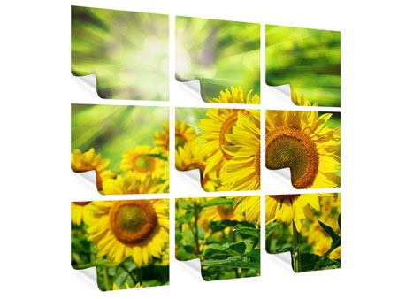 Poster 9-teilig Die Sonne und die Blumen