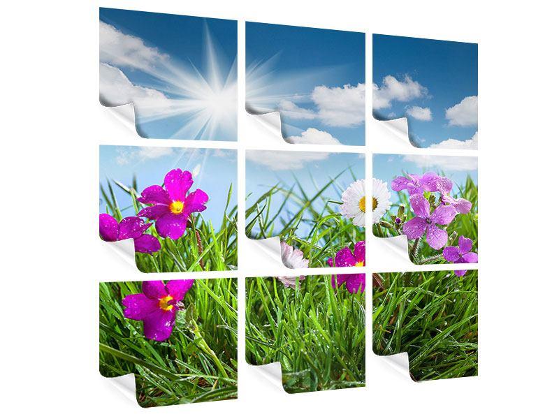 Poster 9-teilig Blumenwiese