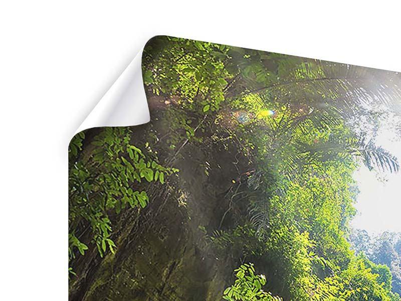 Poster 9-teilig Lichtung im Dschungel